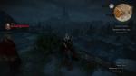 witcher3 2015-07-09 23-43-04-78